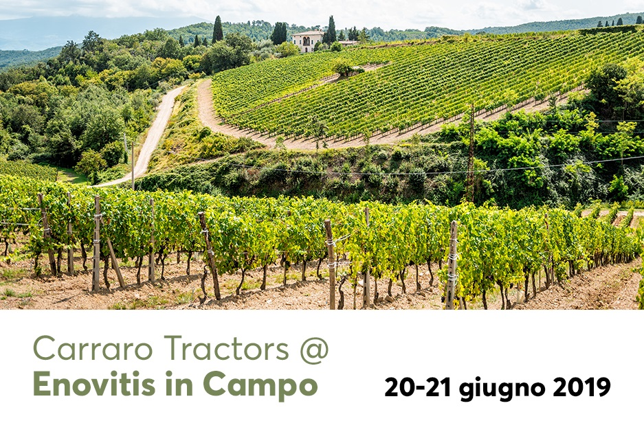 ENOVITIS in Campo (June 20-21, 2019)